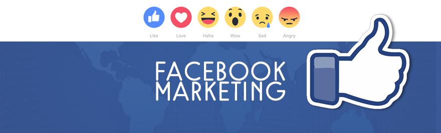 Facebook Marketing Company in Bangalore